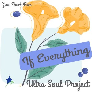 Ultra Soul Project If Everything Mp3 Download