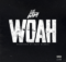 Lil Baby Woah Lyrics Mp3 Download