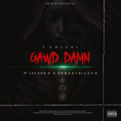 Tedical Gawd Damn Mp3 Download