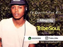 Tribe Soul Soul Healer Mp3 Download