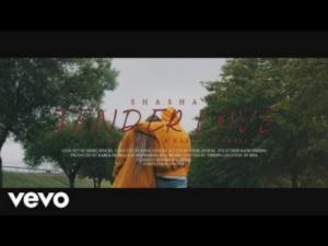 Sha Sha Tender Love Mp4 Music Video Download