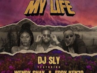 DJ Sly My Life Mp3 Download