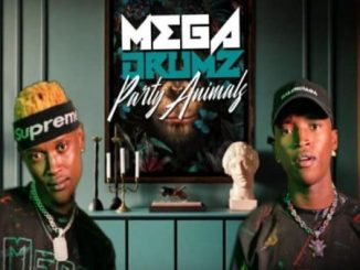Megadrumz Isfundo Mp3 Download