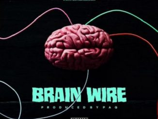 Shatta Wale Brain Wire Freestyle Mp3 Download