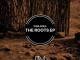 Vida-Soul The Roots Full EP Zip File Download