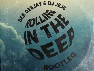 Bee Deejay Rolling In The Deep Download