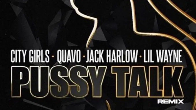 City Girls Pussy Talk Remix Download Mp3