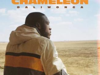 Daliwonga Chameleon Download