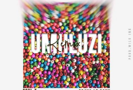 Flash iKumkani Umhluzi Remix Download