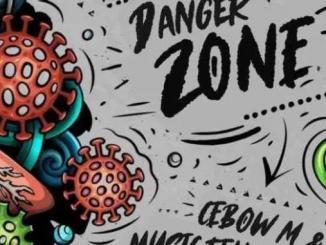 Music Fellas The Final Of Danger Zone Album Download