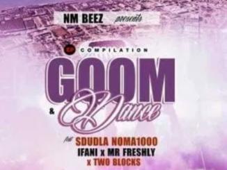Sdudla Noma1000 Gqom & Dance Ep Download